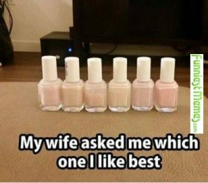 My wife asked me which one I like best meme
