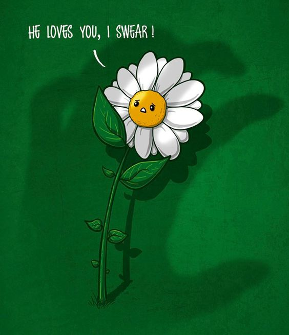 I love you meme with daisy